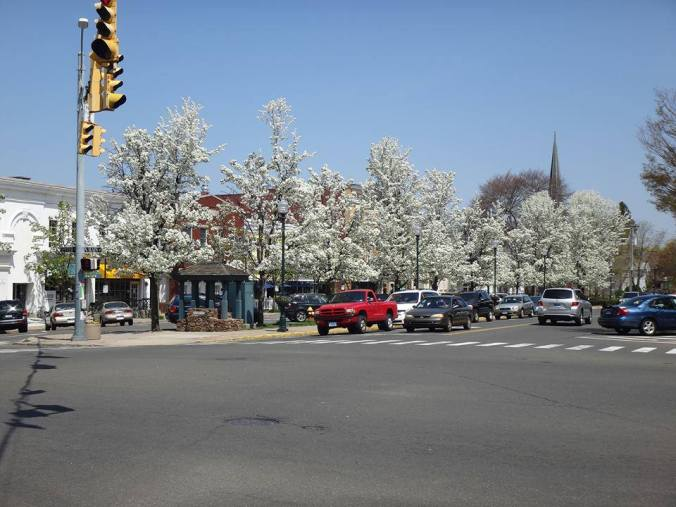down town in early spring